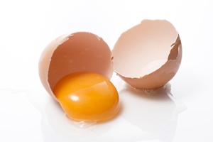 生卵の白身部分